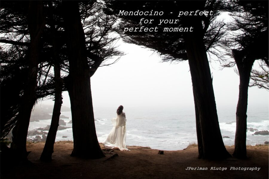 Mendocino - perfect for your perfect moment. Andrea gazes out to sea at Cypress Grove after her Elope Mendocino wedding.